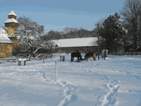 Winterkoppel.png